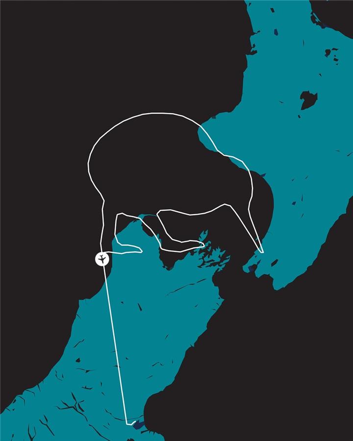 爱心航班的航迹是新西兰的国鸟几维鸟